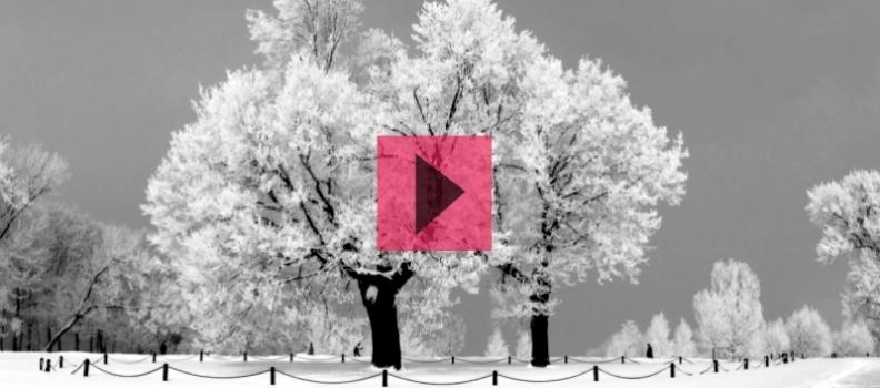 El frío Invierno